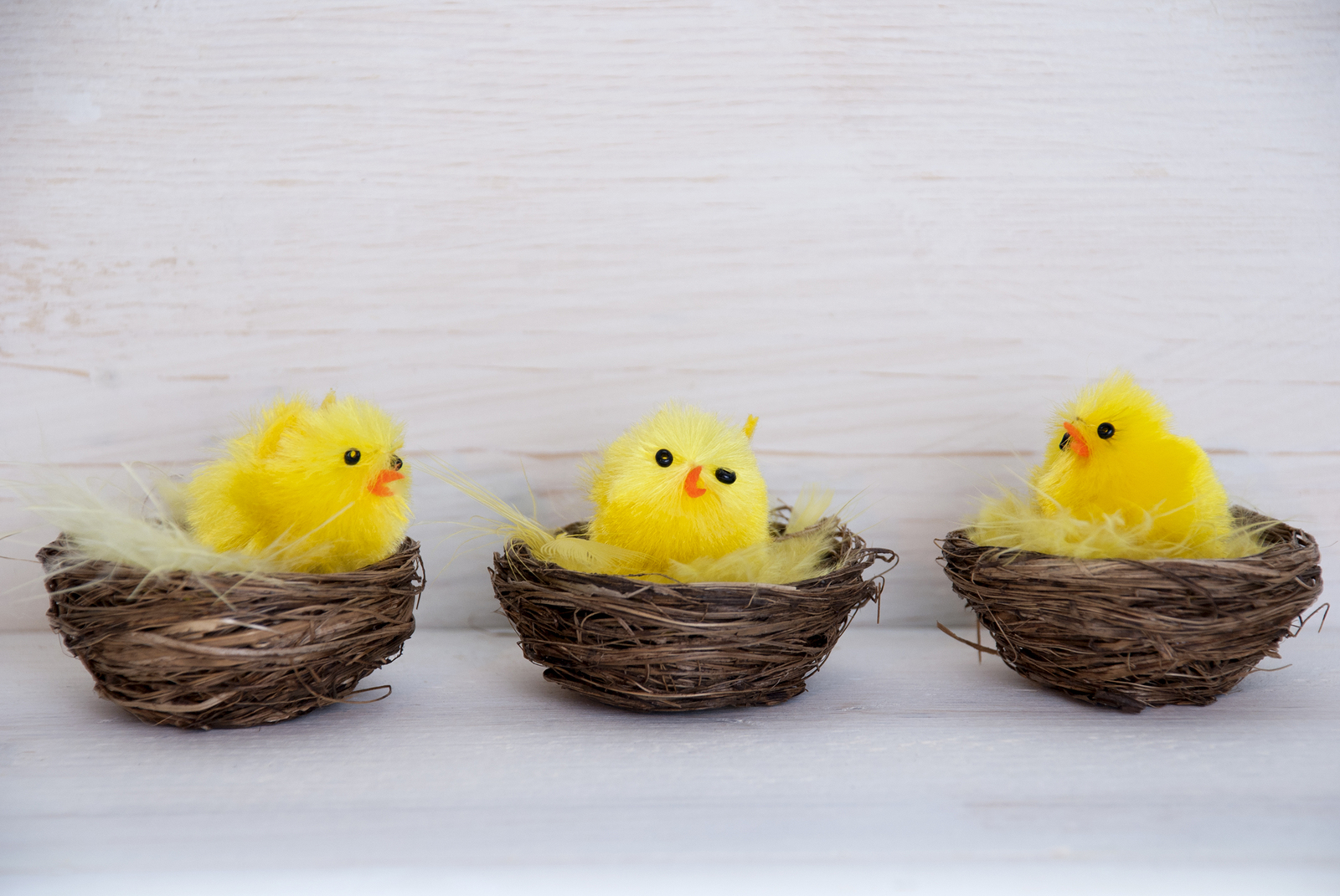 Happy Easter from VideoPak Video Brochures